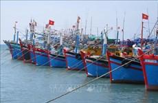 Le Vietnam fait des efforts pour empêcher la pêche INN, selon le site web  Foreign Affair Asia
