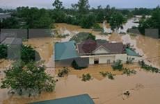 La communauté des Vietnamiens à l'étranger au chevet des sinistrés des crues au Centre