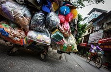 Vers la création d'une alliance de supermarchés pour minimiser la consommation de sacs en plastique