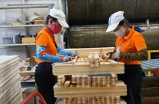 Exportation de bois : 20 milliards d'USD d'exportation visés dans les 5 ans à venir