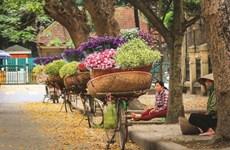 Comment les vendeurs ambulants vivent-ils pendant la crise du COVID-19 ?