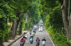 Fête de plantation d'arbres du Printemps 2021 : action de protection environnemental
