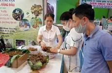 Quang Nam : La 39e foire du ginseng de Ngoc Linh attire près de 1.000 visiteurs