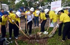 Lancement d'un programme de plantation d'arbres à Soc Trang
