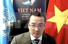 Le Vietnam appelle la Libye à respecter le cessez-le-feu