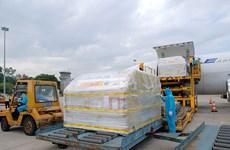 COVID-19 : Plus de 97.000 doses du premier lot de vaccin de Pfizer sont arrivés au Vietnam