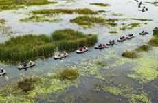 """La Réserve naturelle de Vân Long, une """"baie sans vagues"""" à Ninh Binh"""