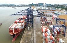 Quang Ninh: un navire d'un tonnage de plus de 50.000 tonnes mouille au port de Cai Lan
