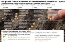 Des graines à valeur médicinale du Vietnam seront cultivées dans l'espace