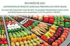 EN 9 MOIS : L'EXPORTATION DE PRODUITS AGRICOLES PRINCIPAUX EN FORTE HAUSSE