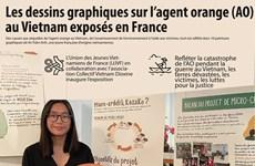 Les dessins graphiques sur l'agent orange (AO) au Vietnam exposés en France