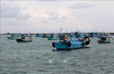 Produits aquatiques : les entreprises s'engagent à lutter contre la pêche INN