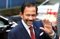 Le Brunei salue les progrès de l'ASEAN dans la lutte contre le COVID-19 et la reprise économique