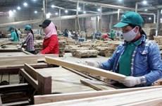 Bois et produits dérivés:  9 milliards de dollars d'exportation attendus cette année