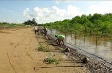 Tra Vinh: investissement dans le développement des régions d'ethnies minoritaires