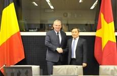 Vietnam et Belgique resserrent leur coopération économique