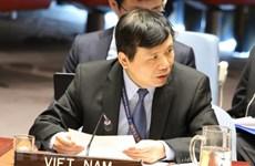 Le Vietnam soutient les efforts pour la paix du Conseil de sécurité de l'ONU