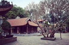Bac Giang s'intéresse au développement du tourisme spirituel
