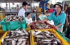 Kien Giang promeut l'exploitation de nouveaux marchés potentiels