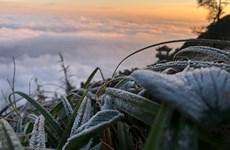 Une vague de froid déferle sur les provinces du Nord
