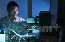 L'Australie finance le projet de développement de cellules solaires de Vietnamiens