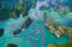 Cat Ba s'oriente vers le tourisme vert et durable