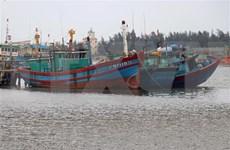 Le Comité national de direction chargée de la lutte contre la pêche illicite voit le jour