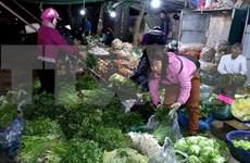 Développement d'un système de centres modernes d'approvisionnement des produits agricoles