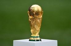 L'ASEAN réfléchit à la candidature pour la Coupe du monde de football en 2034