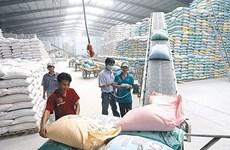 De nouvelles solutions pour stimuler les exportations de riz face aux défis du marché