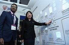 La Malaisie mobilise près de 8 milliards de dollars pour la production d'électricité verte