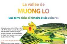 La vallée de Muong Lo, une terre riche d'histoire et de cultures