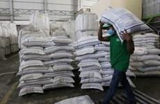 La Chine va importer davantage de riz du Cambodge