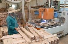 Exportations nationales de bois: 11 milliards de dollars visés cette année