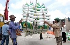 Les exportations de riz vers les Philippines en forte hausse en 2019