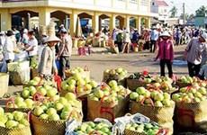 Janvier: plus de 8,2 milliards de dollars d'échanges commerciaux Vietnam – Chine