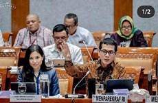 Coronavirus : De lourdes pertes pour le tourisme indonésien