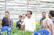 L'Indonésie inaugure une usine de fabrication de viscose de 1,1 milliard de dollars