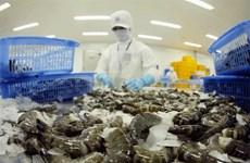 Signes positifs pour les exportations vietnamiennes de crevettes cette année