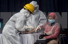 COVID-19: L'Indonésie enregistre son plus grand nombre de cas de contamination en une journée