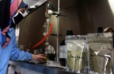 L'Indonésie teste activement un médicament antipaludique dans le traitement COVID-19