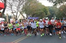 DaLat Ultra Trail 2020 : Plus de 5.000 coureurs attendus à Da Lat