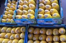 Le Cambodge pourrait exporter environ 500.000 tonnes de mangues par an vers la Chine