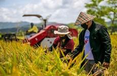 Agriculture: Les Philippines et la BM signent un accord de prêt de 370 millions de dollars