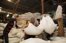 Le Cambodge atteindra bientôt son objectif d'exporter un million de tonnes de riz l'après-COVID-19