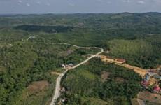 L'Indonésie suspend son plan de déplacement de la capitale sur l'île de Bornéo