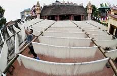 Les délicieuses nouilles de riz traditionnelles du village de métier de Hùng Lô