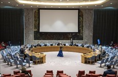Vietnam/ONU : discussions sur la situation au Liban et en Somalie