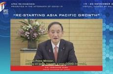 APEC 2020 : les dirigeants appellent à une coopération pour la reprise éconmique