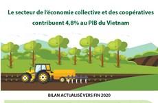 Le secteur de l'économie collective et des coopératives contribuent 4,8% au PIB du Vietnam
